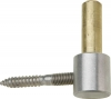 Stainless Steel Hinge Pin